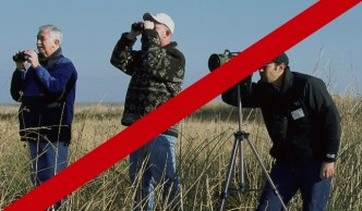birdwatchers revenge