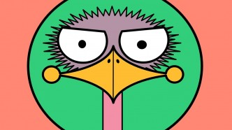 ostrich-1280888_1280