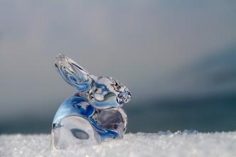 králík skleněný